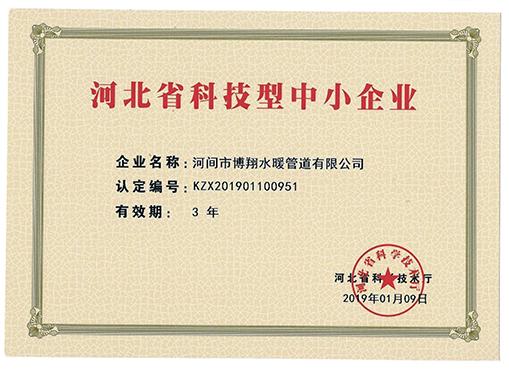 河北省科技型中小型企业证书.jpg